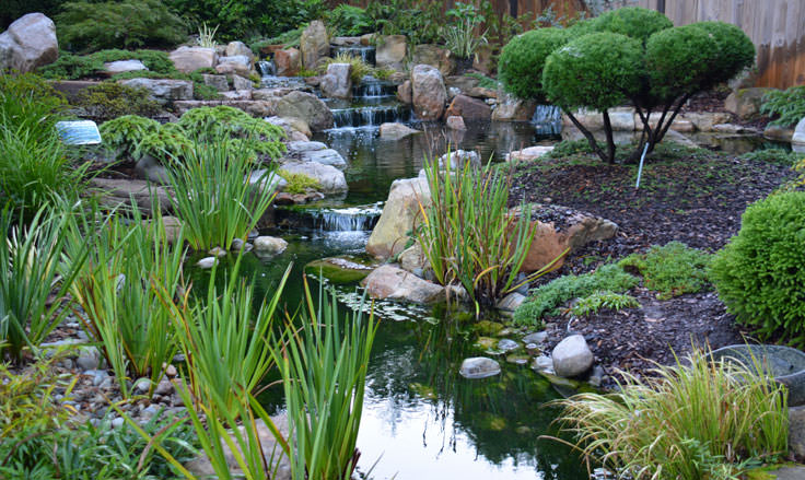 The Japanese Garden at New Hanover County Arboretum in Wilmington, NC